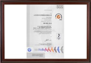 ISO9001 Environmental Certification