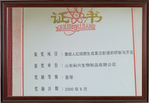 First Prize of Jinan Science and Technology Progress Award