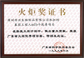 Guangdong Torch Award